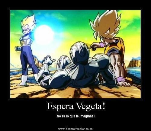 videos de dragon ball z gay